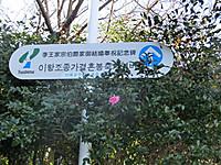 Cimg2908