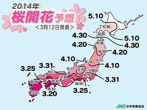 Sakura_zensen