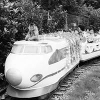 A_osaru_train_2