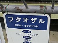 Cimg7148