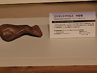 Cimg9148