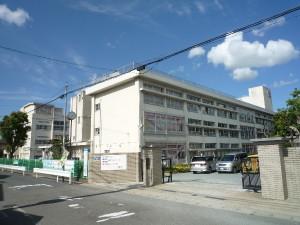 Primary_school