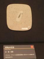 Cimg0359