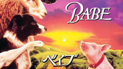 Babe_1