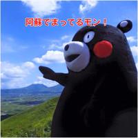 Aso_kumamon2