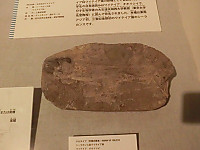 Cimg7264