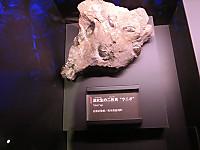 Cimg9284